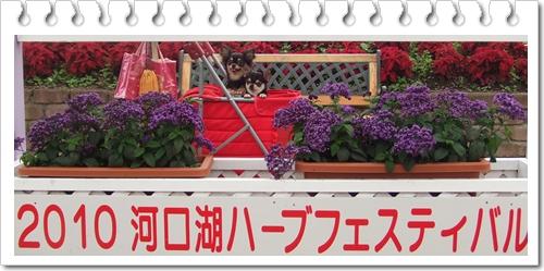 1_20100706192158.jpg