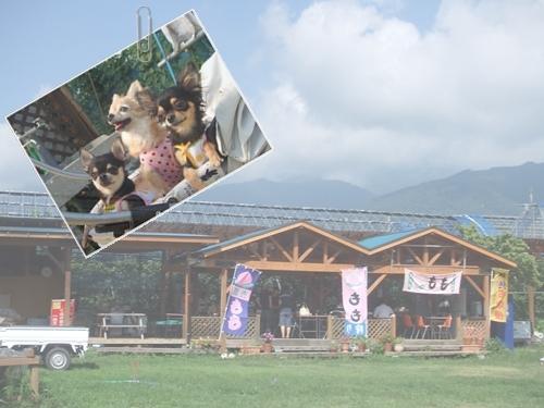 201087-1.jpg