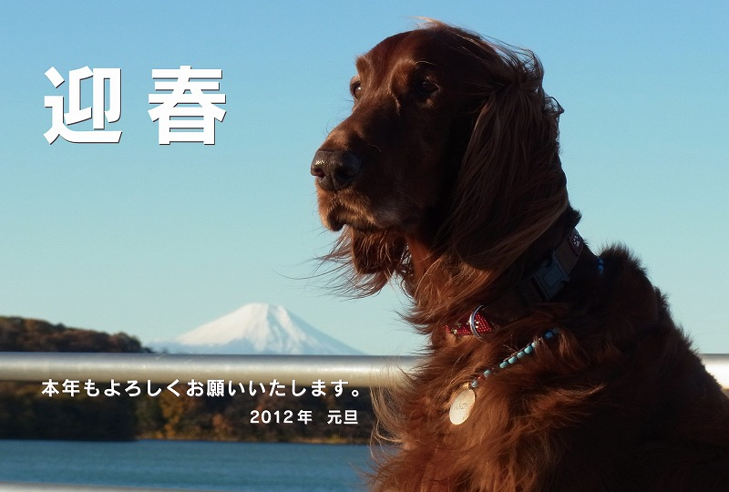 s-アンディ&富士01