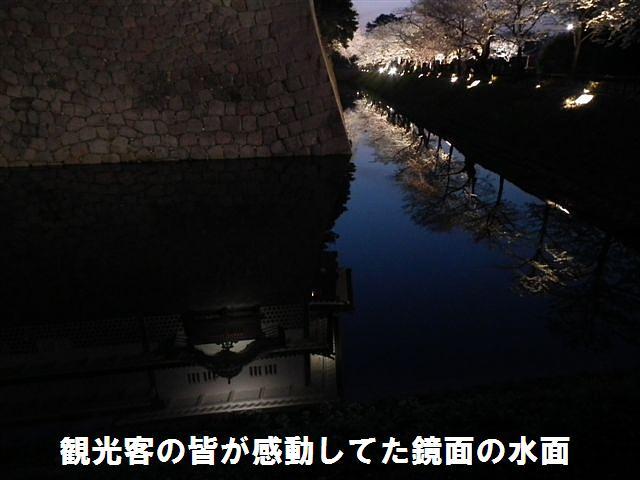 観桜期・金沢城公園 (7)