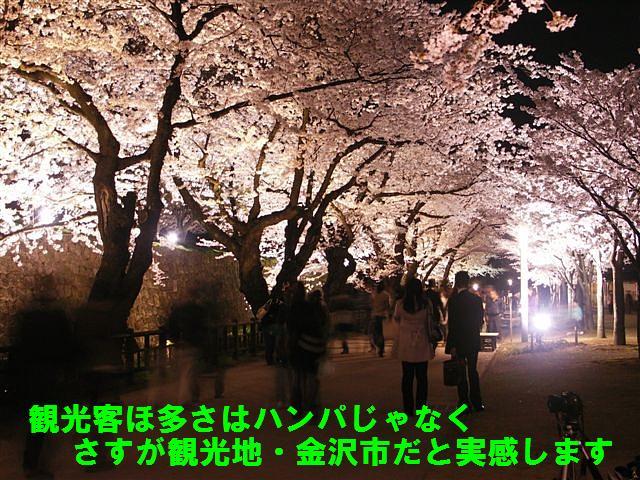 観桜期・金沢城公園 (10)