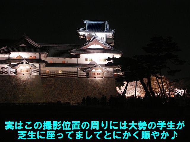 観桜期・金沢城公園 (17)