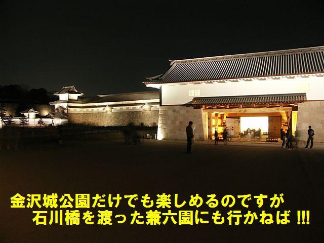 観桜期・金沢城公園 (18)