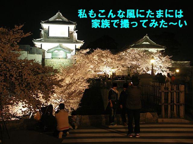 観桜期・金沢城公園 (23)