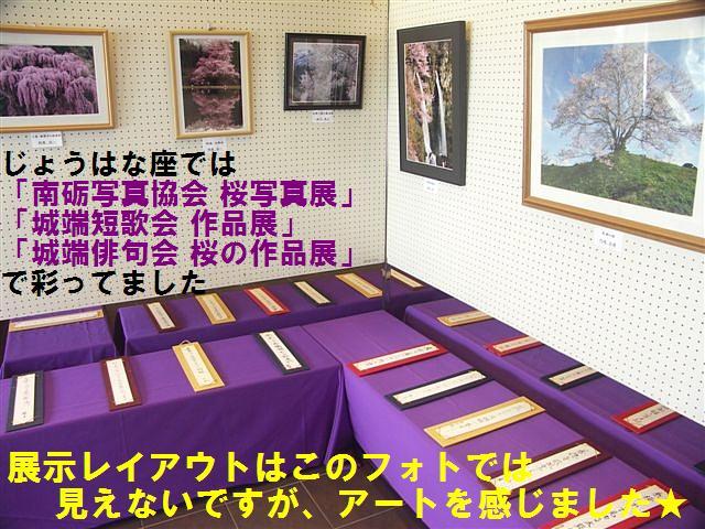 城端しだれ桜まつり (2)