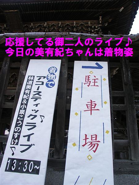 城端しだれ桜まつり (13)