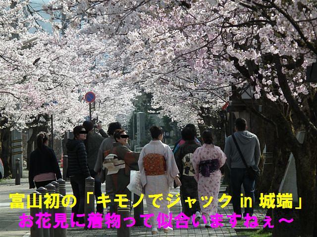 城端しだれ桜まつり (19)