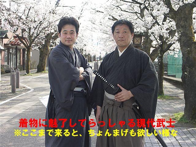 城端しだれ桜まつり (22)