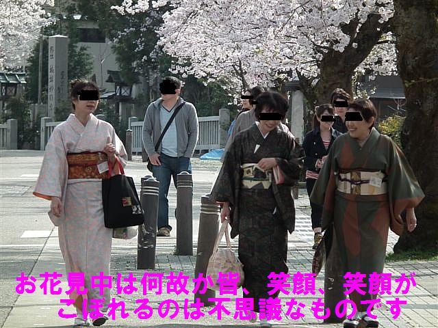 城端しだれ桜まつり (23)