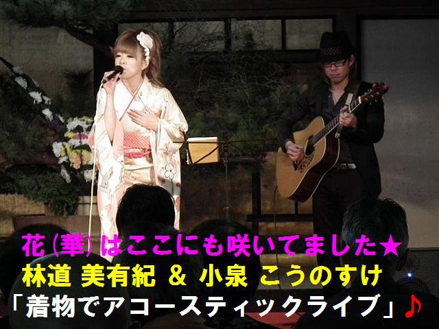 城端しだれ桜まつり (25)