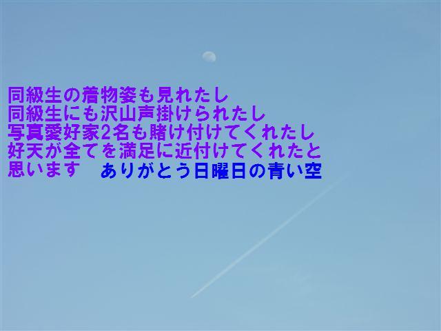 城端しだれ桜まつり (35)
