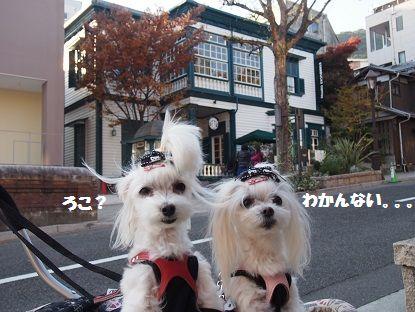 奈良から7