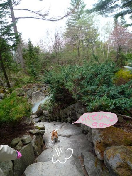 R滝にいくでシ〜♪P1060252_convert_20110524001246