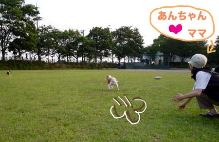 BあんあちゃんママP1060689