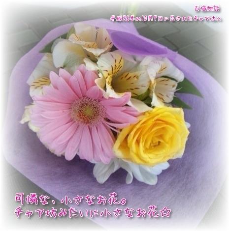 チャア坊へお花