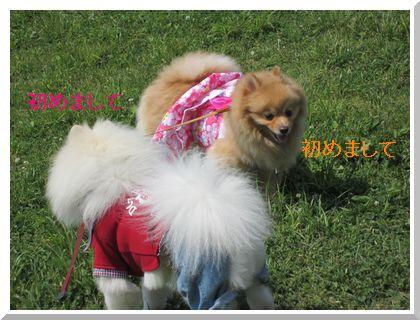 12-165_20120530010432.jpg