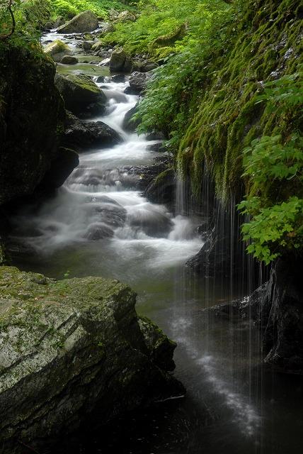 玉垂れの滝1