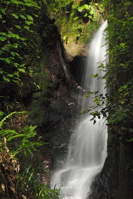 下流部の滝2
