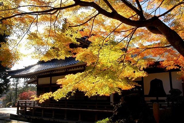 龍泉寺の紅葉2