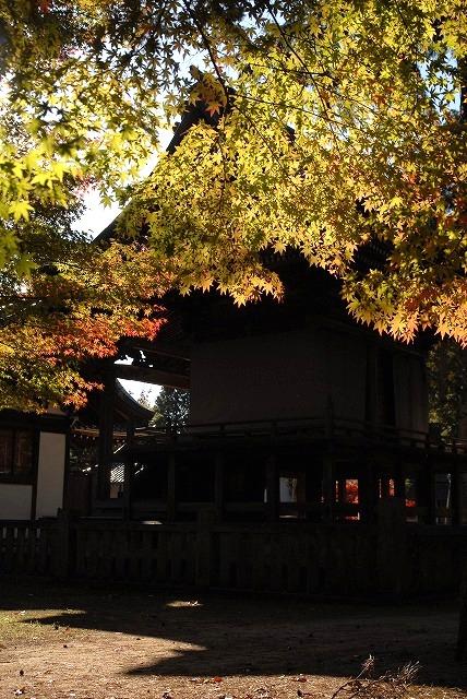 龍泉寺の紅葉21