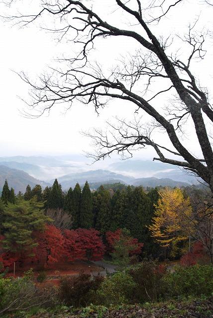 弥高山11