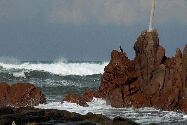 荒れる羽合海岸18