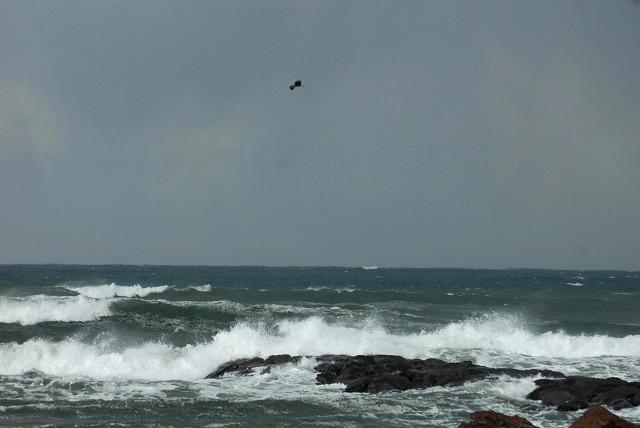 荒れる羽合海岸23