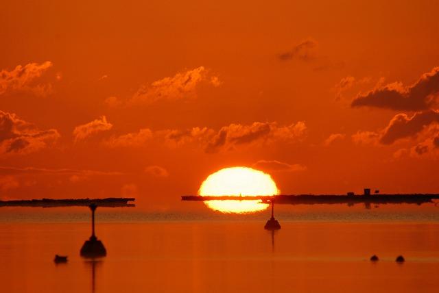 達磨太陽4