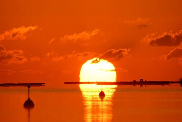 達磨太陽7
