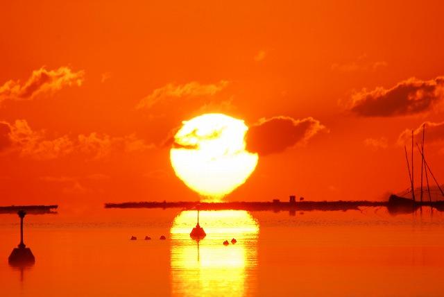 達磨太陽13