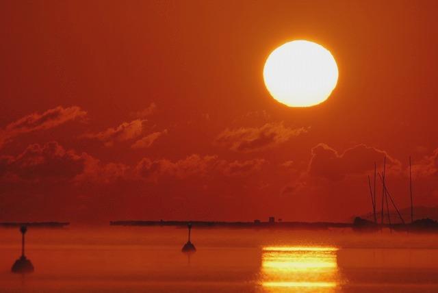 達磨太陽16