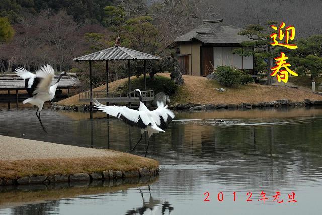 新春の後楽園1