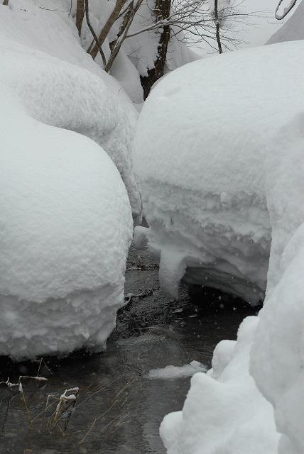 岩井滝付近の雪景色2
