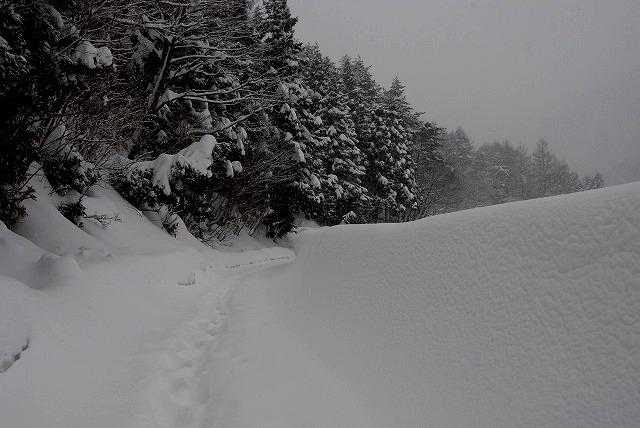岩井滝付近の雪景色4