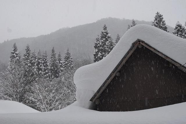 岩井滝付近の雪景色6