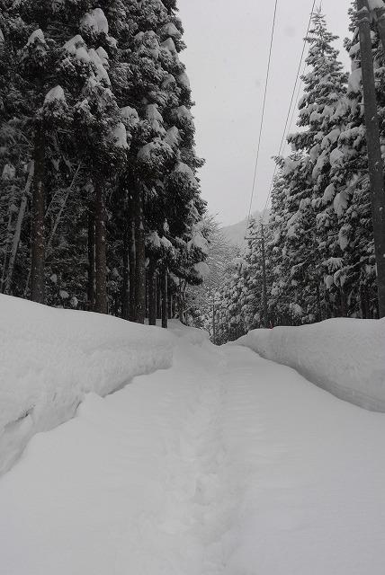 岩井滝付近の雪景色8