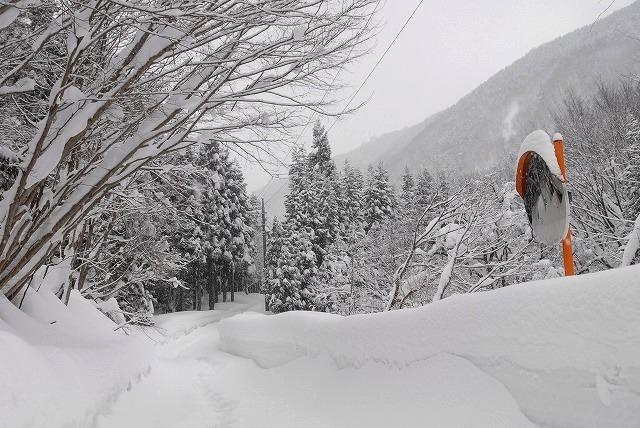 岩井滝付近の雪景色9