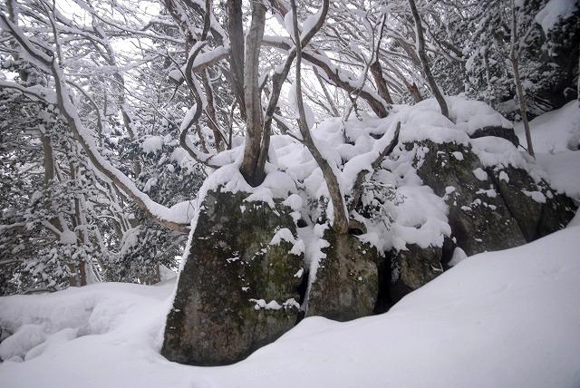 山乗不動滝25