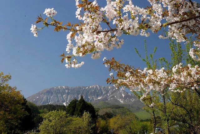 御机から見る大山5