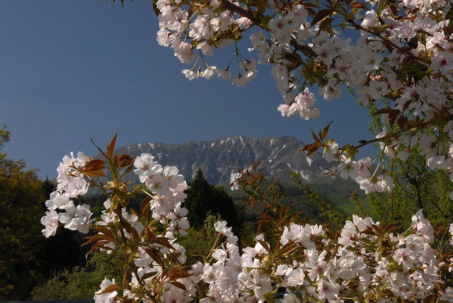 御机から見る大山6