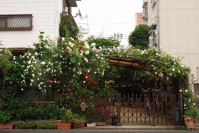 赤木ハウス2