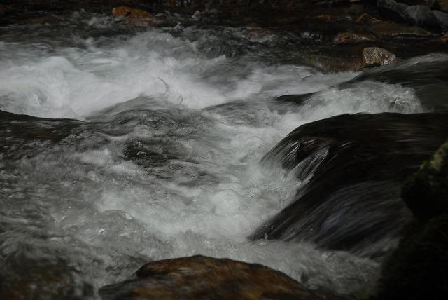 大佐の渓流9