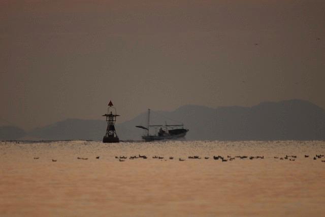 浮き灯台と漁船1