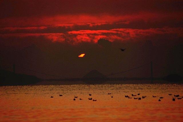 神島の日の出1