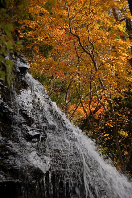 岩井滝15