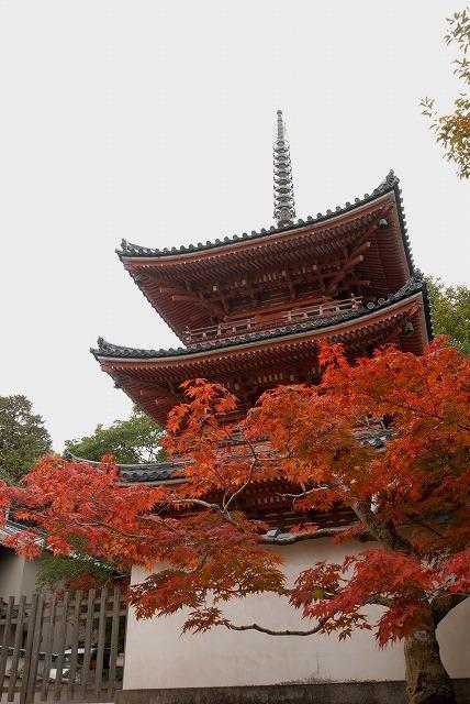 宝福寺39