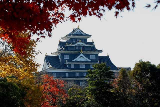 岡山城と紅葉