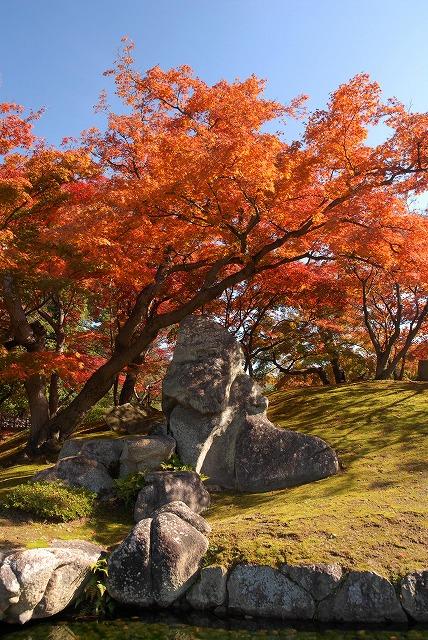陰陽石と紅葉2