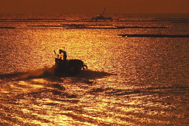 出漁する牡蠣船6