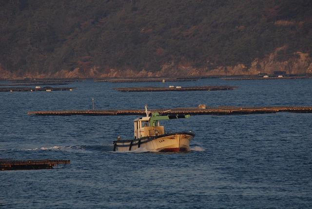 港から出て来る牡蠣船1